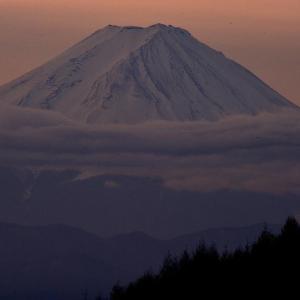 柳沢峠からの富士を求めて