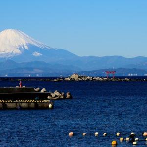 富士の初撮り-3