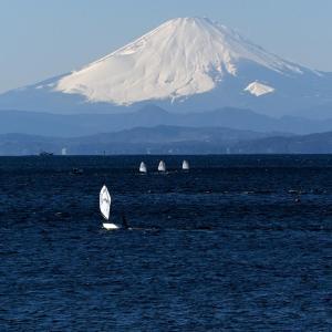 葉山「鐙摺港からの富士」