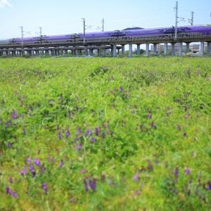 2018/05/09 今日のエヴァ新幹線