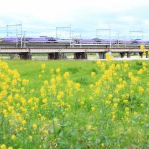 2018/04/15 今日のエヴァ新幹線