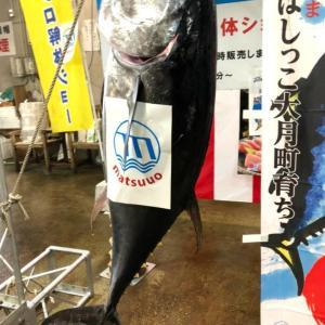 福岡おすすめ!子供も大人も楽しめる「長浜鮮魚市場」市民感謝デー!本マグロの解体ショーもあるよ ♪