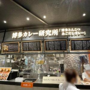 博多カレー研究所の人気メニュー「博多あごだしカレー」を食べた感想【空港おすすめグルメ】