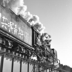 宗谷本線 士別の鉄橋でD51221のギラリを撮る