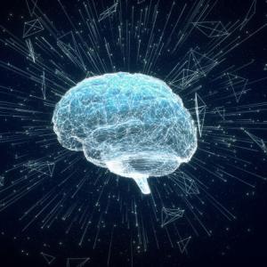脳は老いても進化する!?大人の読書感想文