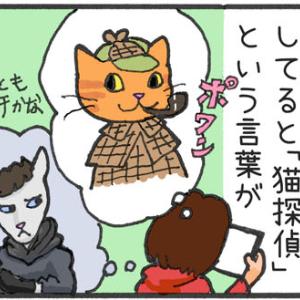 【迷子猫探しの記録10】猫探偵に相談する