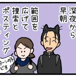【迷子猫探しの記録15】ペット探偵2日目、範囲を広げる