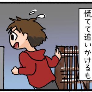 【迷子猫探しの記録4】追いかけるが...