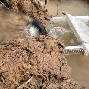 自動で魚を捕る装置を日用品で作ったら……