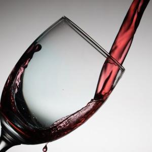 野生のブドウで手作りワインを作るよ!!