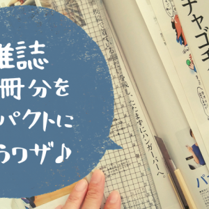 雑誌の収納アイデア。100円ショップのマガジンファイルで20冊分をコンパクトに整理しよう!