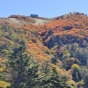 剣山 紅葉が綺麗でした