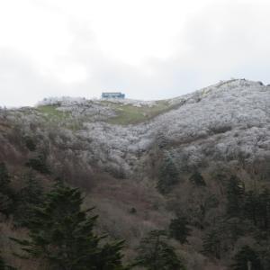 剣山 樹氷