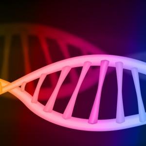 【不妊治療体験記】精子DNA断片化検査をやってきました