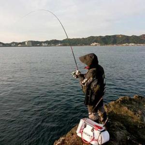 TSURINEWS「フカセ釣りにおける『サルカン』の選び方 素材ごとに特徴を解説」