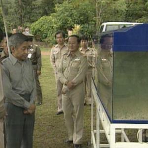 日本テレビ系(NNN)『上皇さまとブルーギルとティラピア』