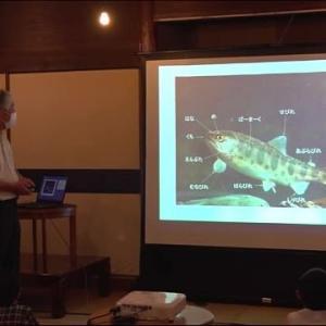 宮崎ニュースUMK『川の資源保護へ 五ヶ瀬町でヤマメ釣りの講習会 宮崎県』