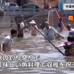 CGTN Japanese『収穫の秋 中国各地で豊作を迎える』