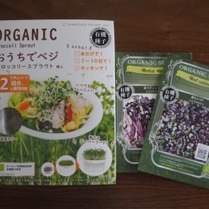 スプラウト&発芽豆(1)