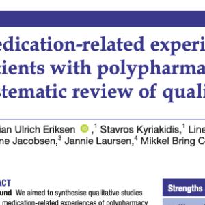 ポリファーマシー患者の服薬関連体験:質的研究の系統的レビュー