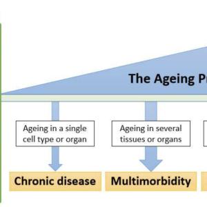 フレイル,マルチシステム,老化症候群の有用な診断ツールは作れるか