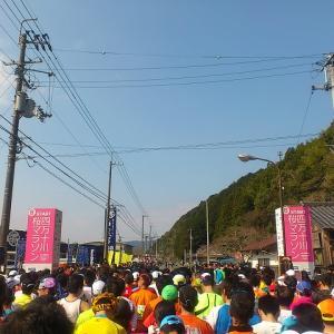第8回四万十川桜マラソン(2016/3/27) 胸の奥に根付いた「走ル旅」!自分の原点の一つです。来年こそはよろしくお願いします!