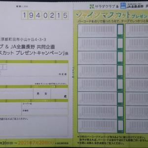 サラダクラブ&JA全農長野 共同企画「シャインマスカットプレゼントキャンペーン」