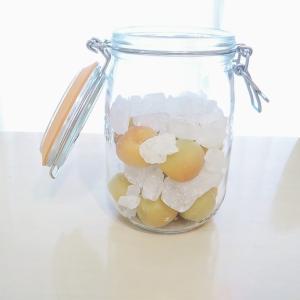 梅が余ったので、梅シロップと梅干し作りにもチャレンジしました。