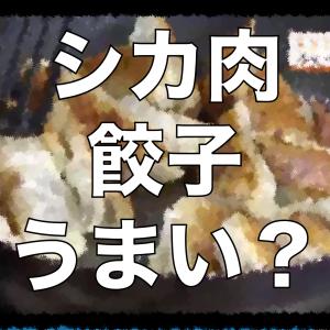 【脂肪少なくヘルシー】鹿肉活用へ ハンターが餃子作り教室 「ラードとごま油を加えてジューシーさを出しました」・北海道