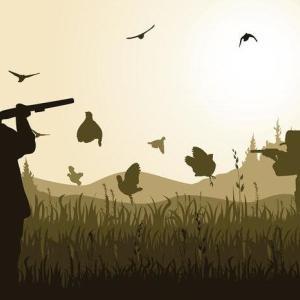 【狩猟免許】狩猟免許はどの種類を取るべき?