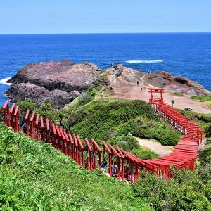 山口県へ観光に行こう!あの赤い鳥居がいっぱいの神社はどこ?!