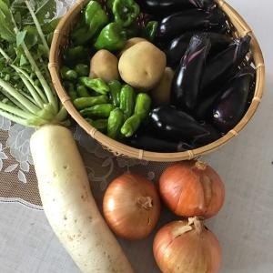 お野菜のお届けお届け🚗