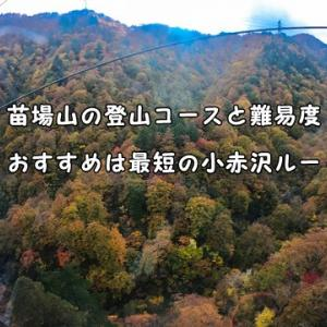 苗場山の登山コースと難易度 おすすめは最短の小赤沢ルート