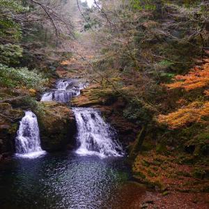 赤目四十八滝 サンショウウオがいる観光ハイキングコース! 夏場の水遊びから雨の散策まで