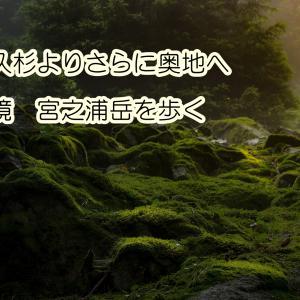 屋久杉よりさらに奥地へ 秘境 宮之浦岳を歩く
