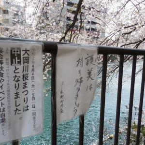 中止になった大岡川桜まつり2020