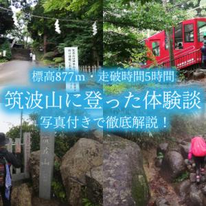 筑波山登山|初めての御幸ヶ原〜白雲橋コース【日帰り服装・アクセス・費用】