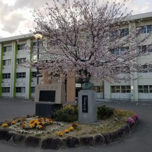 尾道高等学校ソフトテニス部 活動の現状