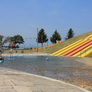 遊水公園で夏のレジャー‼