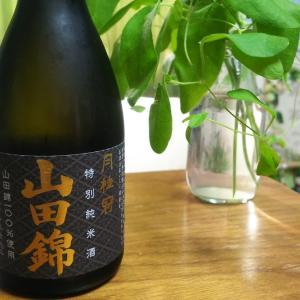 日本一有名な酒造メーカーが醸す日本酒の実力とは… 月桂冠「特別純米酒 山田錦」