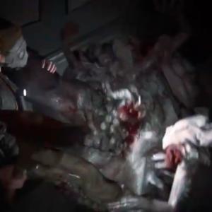 現在実況中のゲームについて…「The Last of Us Part II(ザラストオブアス2)」攻略(26)〜キメラ型感染者登場〜