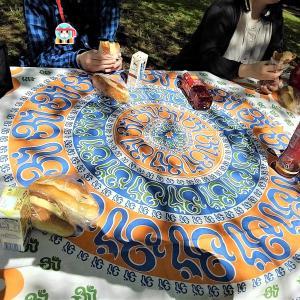近所の公園でピクニック
