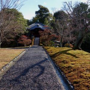 桂离宫是日本宫廷庭园最佳杰作。   【桂離宮は日本の宮廷庭園の最高傑作です。】