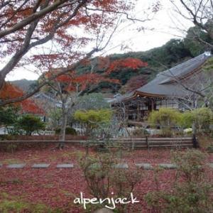京都的秋天红叶结束了          【京都の紅葉は終わりました】