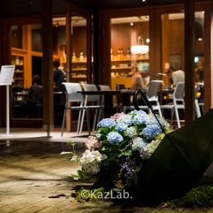 美味しい蕎麦とオシャレな雰囲気!ハルニレテラスにあるせきれい橋 川上庵 軽井沢!