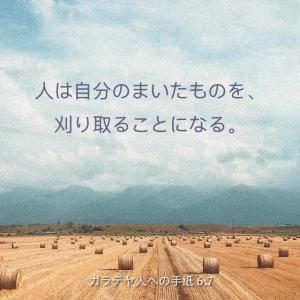 誹謗中傷の日本人は、恥ずかしい