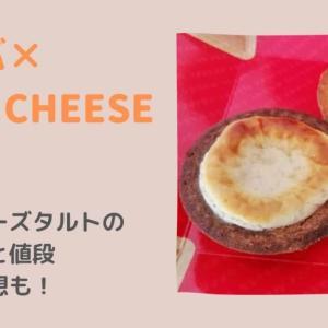 【スタバ】BAKEコラボチーズタルト2種類のカロリーや値段は?食べてみた感想も!