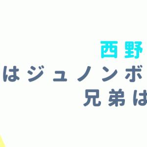 西野凪沙の弟はジュノンボーイ?5人姉弟で仮面ライダー共演の可能性は?