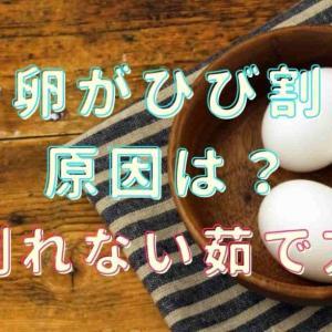 ゆで卵がひび割れる原因はなに?白身が飛び出すのを防ぐ方法を調査