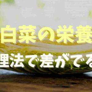 白菜は栄養ないの?調理法で栄養が変わるか調査